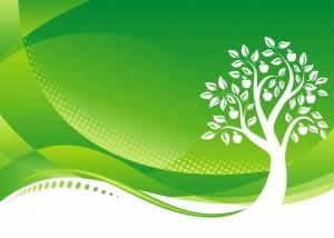 Οι νέοι σε κάθε στάδιο της εκπαίδευσής τους θα πρέπει να ενημερώνονται για τους κινδύνους υποβάθμισης του περιβάλλοντος, για την υπερβολική χρήση των ορυκτών πηγών ενέργειας αλλά και για τις προοπτικές των ανανεώσιμων πηγών ενέργειας