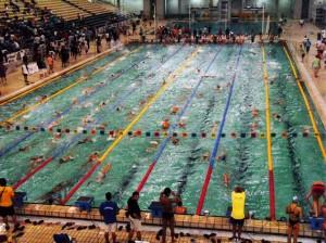 «ΜΕΓΑΛΕΞΑΝΔΡΟΣ ΑΘΛΗΤΙΚΟΣ ΣΥΛΛΟΓΟΣ ΓΡΕΒΕΝΩΝ»: Εγγραφές για τα τμήματα κολύμβησης