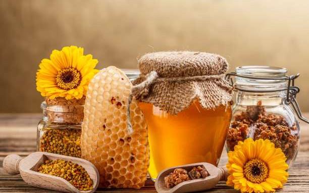 Γρεβενά: Σεμινάριο ενημέρωσης, από τον Μελισσοκομικό Σύλλογο Γρεβενών