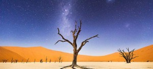 national_geographic_3.8_708
