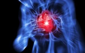 kardya - καρδια