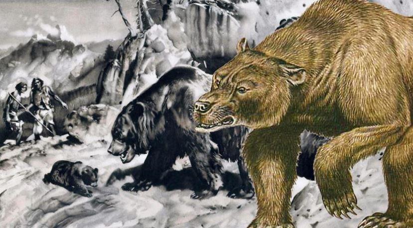 ΠΡΙΝ ΑΠΟ 40.000 ΧΡΟΝΙΑ Οι αρκούδες των σπηλαίων ζούσαν στην Ελλάδα Μεγαλόσωμες αρκούδες, βάρους 700 κιλών και ύψους (σε όρθια στάση) έως και 2,5 μέτρα, «εποίκισαν» τη Βόρεια Ελλάδα, πολλές χιλιάδες χρόνια πριν, όπως μαρτυρούν πάνω από 30.000 (!) απολιθώματα οστών που βρέθηκαν σε ένα μόνο σημείο, στο σπηλαιοπάρκο Αριδαίας στην Πέλλα. Κι ύστερα ήρθε ο άνθρωπος και οι αρκούδες των σπηλαίων εξαφανίστηκαν, αφήνοντας «χώρο» σήμερα για τους απογόνους τους, την καφέ αρκούδα. ΕΘΝΟΣ 8:59, 18/8 68 «Ο άνθρωπος του Νεάντερταλ εξολόθρευσε την αρκούδα των σπηλαίων», λέει η κ. Τσουκαλά και εξηγεί: «Στην προσπάθειά του να προστατευτεί από το δριμύ ψύχος ήρθε αντιμέτωπος με τη γιγαντιαία αρκούδα, κυρίως όταν αυτή ήταν σε λήθαργο, άρα αδύναμη και ανίκανη να αμυνθεί»