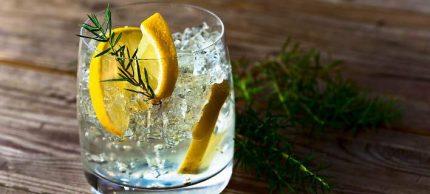 gin-toni-708c
