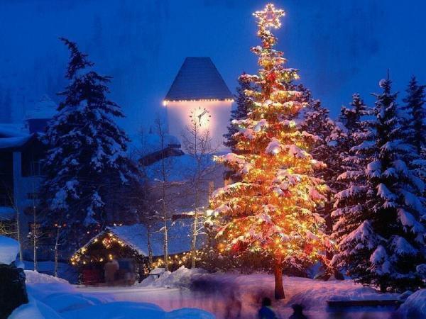 new_christmas_tree_t2