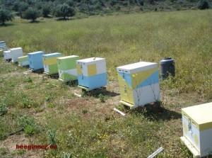 μελισσια