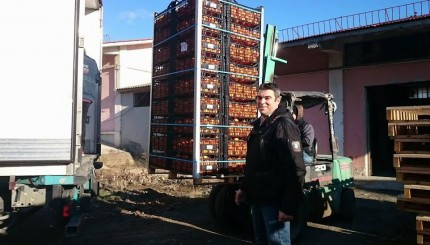 πορτοκαλια 2