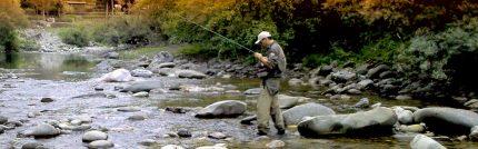 ψαρεμα